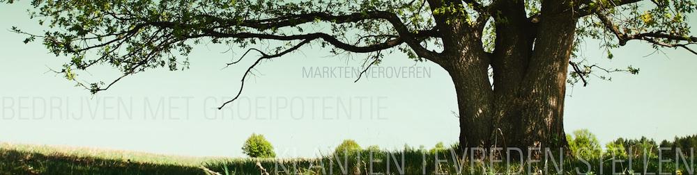 Ga naar de homepage van Dockpoint